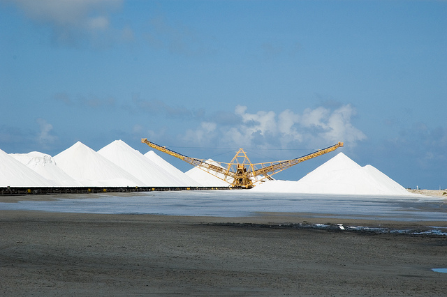 Himalája só