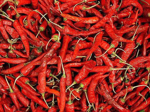 Chili szósz