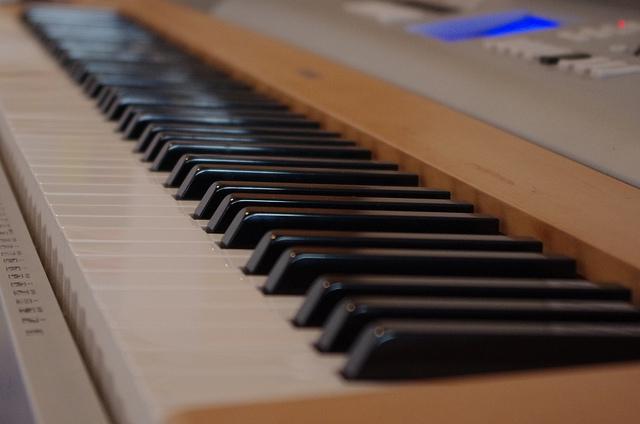 Digitalis Zongora