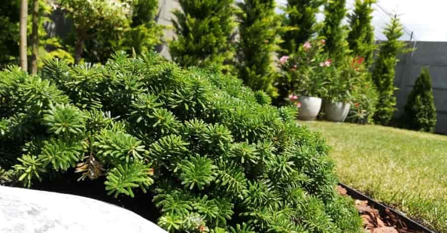 kertészeti munka árak